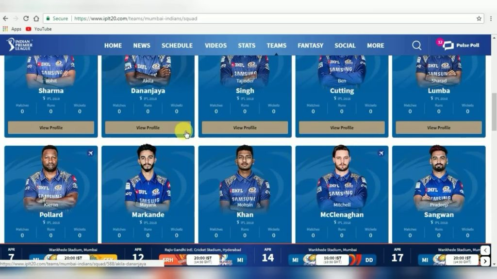 Choose your virtual IPL team